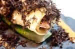 Canellini / Osso Bucco / Bibb / Australian Truffle