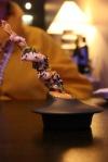 YUBA - shrimp, miso, togarishi
