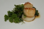 bay scallop - spinach / dijon / black pepper