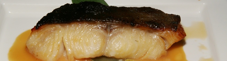 GINDARA - Grilled miso marinated Black Cod with yuzu miso sauce