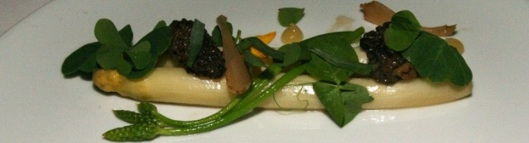 Janssen Farms White Asparagus & Morels – Wild Asparagus, Ramps, Morels, Preserved Lemon, Tarragon