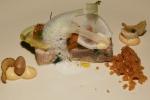 Pig Head Terrine, Cured Pork Loin, Razor Clams, Confit Lobster Mushroom, Old Bay, Sourdough