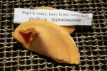 Nick's Gwailo Fortune Cookies