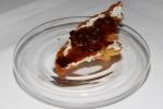 Chicken: crispy chicken skin, rosemary mascarpone, bacon jam