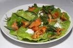 Chanterelle Mushroom Salad - herbed goat's cheese, bibb lettuce, herb & shallot vinaigrette $15