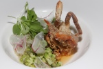 Soft Shell Crab romanesco, beet salad, new style sauce, radish and cauliflower
